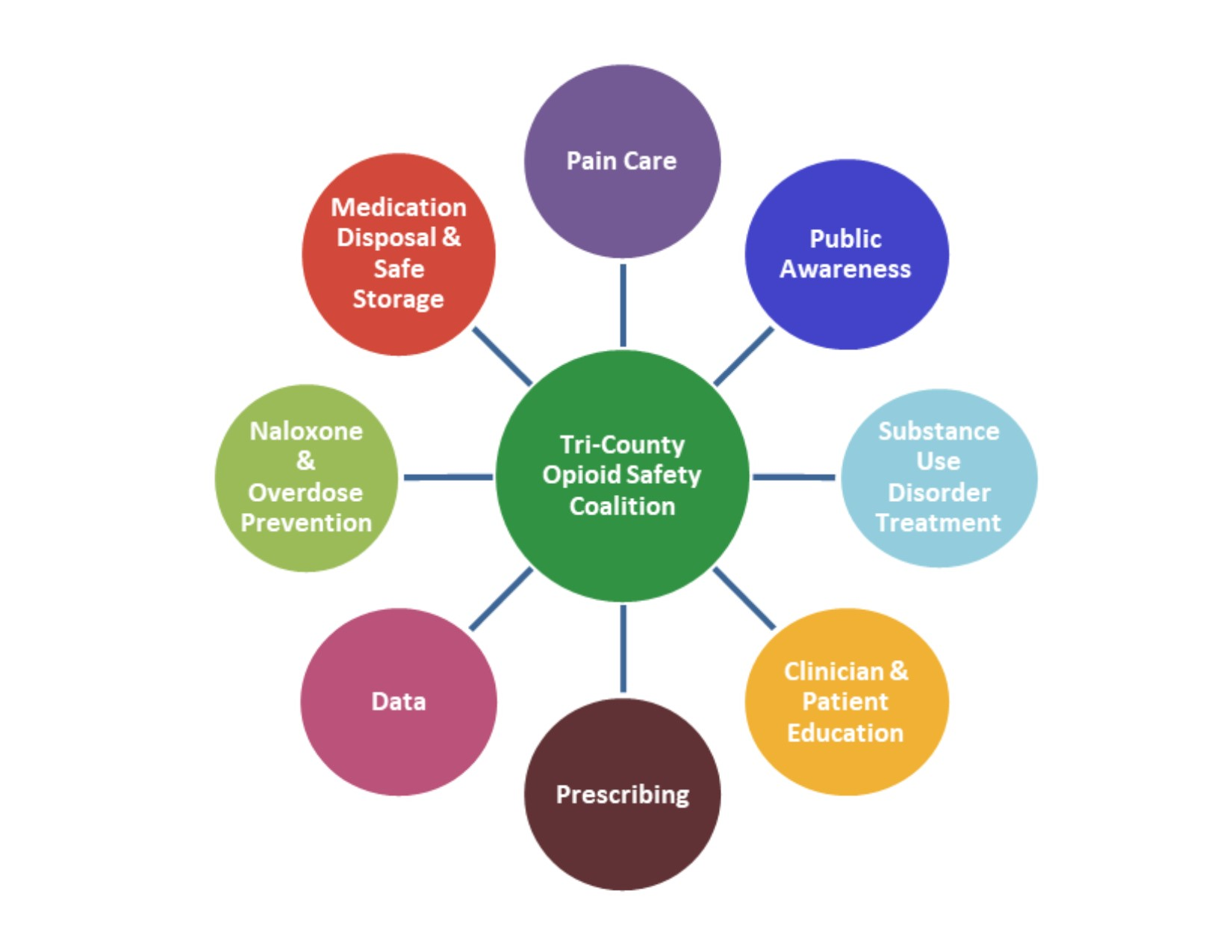 Diagram of the Tri-County Opioid Safety Coalition's Domains: Pain Care, Public Awareness, Substance Use Disorder Treatment, Clinician and Patient Education, Prescribing, Data, Naloxone and Overdose Prevention, and Medication Disposal and Safe Storage