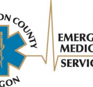 Washington County EMS logo
